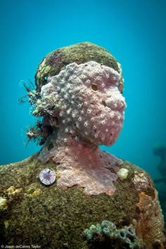 Underwater Sculture by Jason de Caries Taylor. Wow!