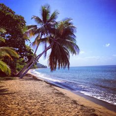 Twin Travels: Rincon Puerto Rico | Twin Tested