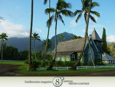 "Photo of the Day - January 12, 2012: ""Hawaiian morning."" Taken by Cathryn Delude (Andover, MA).  Photographed March 2009, Hanalei, Kauai, HI."