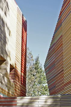 Wood. Planks. Stacking. Packing. Renzo Piano