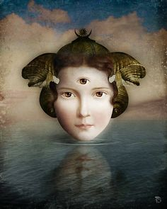 The Mirror by Christian Schloe http://www.redbubble.com/people/christianschloe/works/8835037-the-mirror?c=163986-guardian