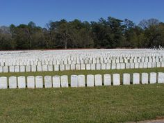 Andersonville National Cemetery, Andersonville, Georgia. Of 45,000 Union prisoners held at Andersonville Prison 13,000 died of starvation, malnutrition, diarrhia or other communicable diseases. Most are buried here. The rows of stones in foreground are very close together because toward the end of the war the dead were buried in trench graves. ~~ 3/25/2001