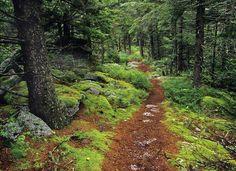Appalachian Trail, West Virginia