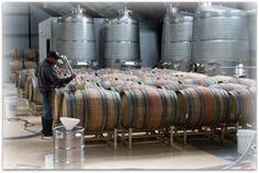 Venge Vineyards barrels and tanks calistogaranch.com