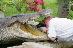 20amazing photographers who are ready todoanything for the perfect shot