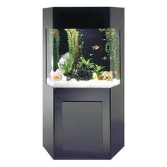 Midwest Shadow Box AquaCustom Aquarium is an elegant acrylic aquarium that has a conveniently located accessory cabinet built in the base of the aquarium to stow away supplies and accessories for your tank. This 50 gallon aquarium is a stylish accent piece to any home or office environment. Aquarium Cabinet, Aquarium Stand, Aquarium Kit, Aquarium Supplies, Aquarium Systems, Aqua Aquarium, Aquarium Ideas, Aquariums For Sale, Tanked Aquariums