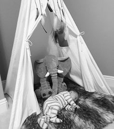 Repost from my wife @sportsbrasandspice They are surprising me any guesses?  Cheyenne and I are packing for B as we have a few days of birthday surprises for George.  #toocute #napping #teepee (for anyone who might be concerned I'm sitting here with him.  He's safe :)