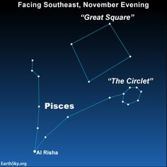 Star of the week: Al Risha knots two Fishes of Pisces together ~ Pisces the Fishes, is one of the sky's most graceful and beautiful constellations.