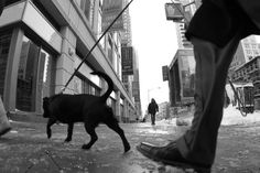 "Saatchi Art Artist Misha Dontsov; Photography, ""New York Monotype"" #art"