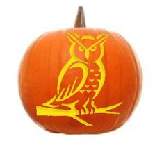 Carve your Halloween pumpkin with this owl stencil! http://wwf.to/16ZkpoO #WWFpumpkin