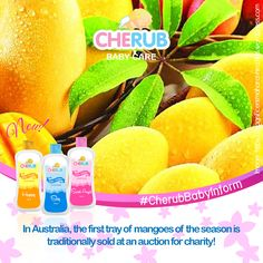 Mangoes for a cause! Cherub Baby, Baby Care, Charity, Harvest, Amazing, Newborn Care