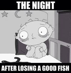 """For more fishing humor check out our Facebook page https://www.facebook.com/CatsandCarp and  follow our """"Fishing Humor"""" Board at http://www.pinterest.com/catfishandcarp/fishing-humor/ http://binkspoons.com"""