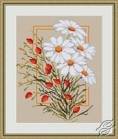 Daisies - Cross Stitch Kits by Luca-S - B290