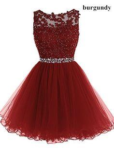 Lace Bateau Neck Sleeveless Short Tulle Homecoming Dress