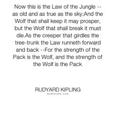 """Rudyard Kipling - """"Now this is the Law of the Jungle -- as old and as true as the sky;And the Wolf that..."""". dogs, show-love-for-dogs"""