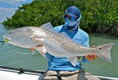 Fly Fishing | Blog | Photos | Podcasts | Travel | Gear | and More - Moldy Chum - April SOTM Entry: GladesRed