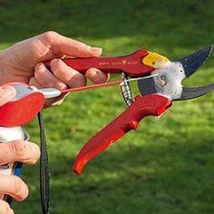 nettoyer les outils du jardin