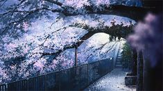 Animated gif uploaded by 김태형. Find images and videos about cute, pink and gif on We Heart It - the app to get lost in what you love. Gif Background, Landscape Background, Anime Gifs, Anime Art, Imagenes Gift, Casa Anime, The Garden Of Words, Anime Places, Tamako Love Story