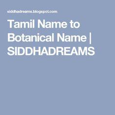 Konar Tamil Guide 9th Pdf - xiluslongisland