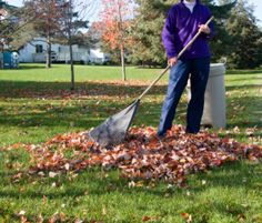 If there's too much debris in your garden, get our debris removal