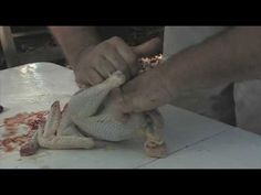 ▶ Survival Skills with Russ - How to Butcher a Chicken pt 1 (kill, pluck, gut) - YouTube