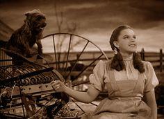 The Wizard of Oz (1939) - Photo Gallery - IMDb
