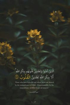 Noor Al-Quran Academy Quran Quotes Love, Quran Quotes Inspirational, Beautiful Islamic Quotes, Arabic Quotes, Hadith Quotes, Qoutes, Quran Wallpaper, Islamic Quotes Wallpaper, Quran Arabic