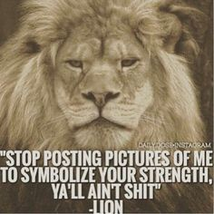 What this lion said