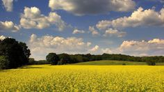 awesome clouds landscapes nature fields skyscapes land android wallpaper