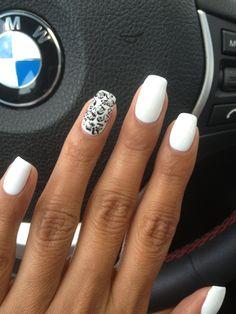 Silver Glitter Cheetah on White