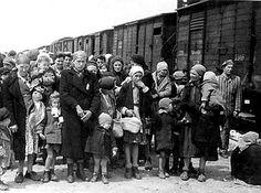Femmes et enfants juifs hongrois arrivent au camp d'extermination d'Auschwitz-Birkenau le 26 mai 1944 - les femmes et les enfants étaient gazés dès leur arrivée au camp.