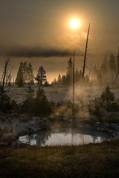 Yellowstone Caldera, Wyoming, sunbeam, idyl, water, reflections, mist, misty, tree, beautiful, photograph, photo