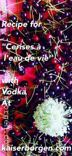 Cherries and vodka recipe: Kaiserborgen.com