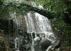 Parque Natural Sierra de Aracena Sierra, Waterfall, Travel, Outdoor, Andalusia Spain, Caves, Walks, Islands, Places