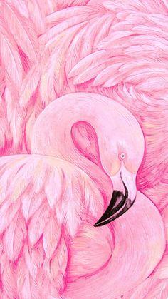 Wallpaper Pink Flamingo Animals 27 Ideas For 2019 Flamingo Wallpaper, Flamingo Art, Pink Flamingos, Iphone Wallpaper, Pink Bird, Bird Art, Diy Painting, Cute Wallpapers, Trendy Wallpaper