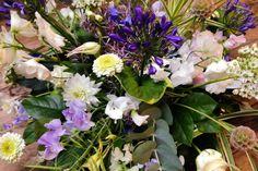 Bloembinders - Producten - Poetisch Plants, Plant, Planets