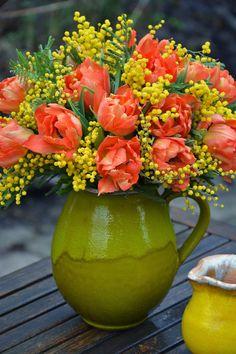 En ydmyg Have | Tulpaner och Mimosa