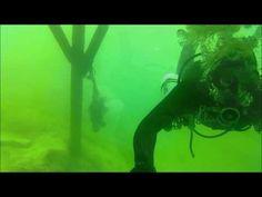 Aquarium, Diving, Freedom, Goldfish Bowl, Aquarium Fish Tank, Aquarius, Fish Tank
