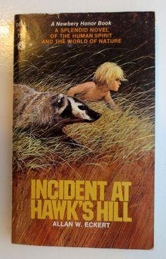 Incident at Hawk's Hill (1973) by Allan W. Eckert - Vintage Childrens Book