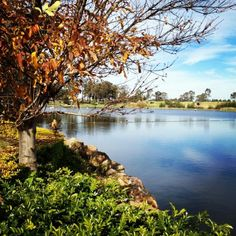Hunter Valley in Autumn...Beautiful!