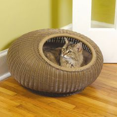 Herzher's Cat Pod Decorative Cat Bed Cool Cats, Heated Cat Bed, Designer Dog Beds, Cat Furniture, Rattan Furniture, Pet Beds, Pet Gifts, Dog Design, Cat Love