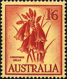 1960 vintage stamp of Christmas Bells - Blandfordia, a red and yellow Australian native flower