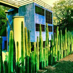 Diego Rivera's Studio   Mexico City