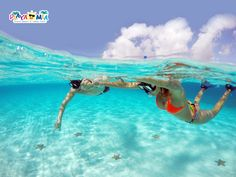 """Cozumel Excursions   Relax and Snorkel at  """" El Cielo Beach """". A natural star fish sanctuary that has become a must during your travel into Cozumel Island."""