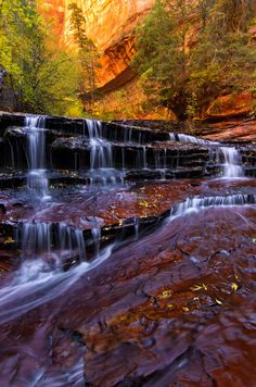 Archangel Falls, Zion National Park, Utah photo via besttravelphotos 84 リアクション Oh The Places You'll Go, Places To Travel, Places To Visit, Beautiful Waterfalls, Beautiful Landscapes, Zion National Park, National Parks, Beautiful World, Beautiful Places