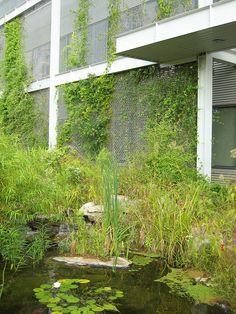National Wildlife Federation Headquarters, Reston, VA