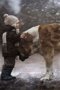 Child and Big dog