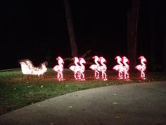 we had flamingos this year instead of reindeer...     LOOK JANICE...THINK I…