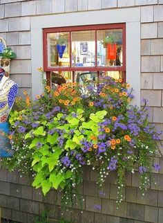 Awesome Plant Combinations For Window Boxes 25