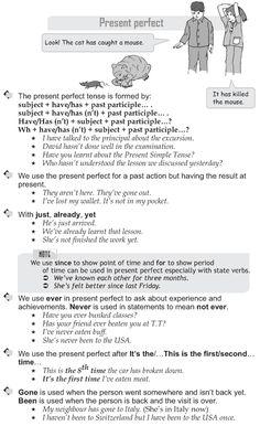 English  Grammar - Present perfect